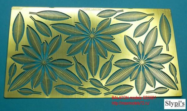 BMSD3501   Листья папоротника     Fern leaves (thumb9017)