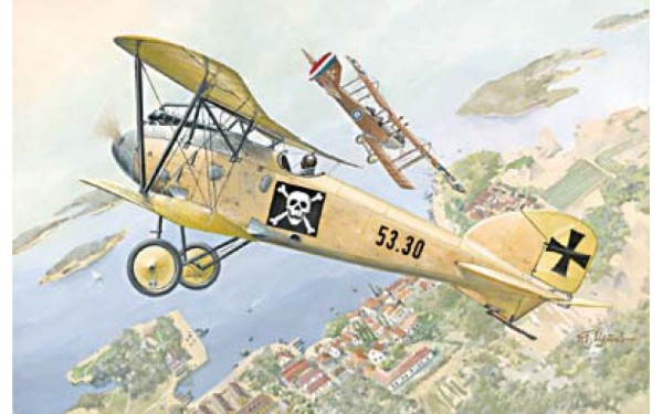 RN022   Albatros D.III Oeffag s.53.2 (thumb20032)