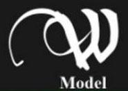 W-Model