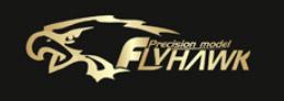 Flyhawk Model