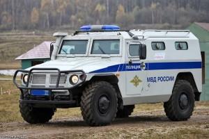 """MSD03   Декаль для модели ACE72177   STS """"Tiger"""" ВАРИАНТ 3 полиция (attach1 41715)"""